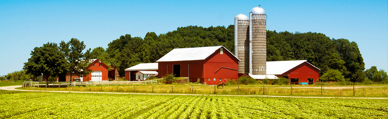 Farm image to represent ag loans
